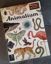 Animalium book 2