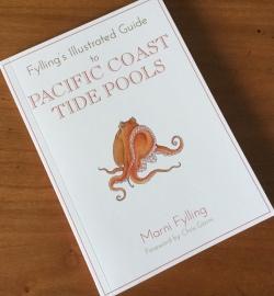tide pool 3 tries